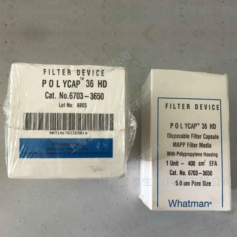 Whatman Polycap HD高强度囊式滤器5.0μm