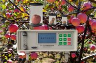 SY-1022SY-1022果蔬呼吸测定仪