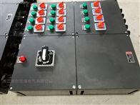 BXMD工程塑料防爆防腐照明配電箱