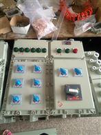 BXK化工厂电机起动防爆控制箱