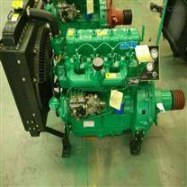 装载机495发动机