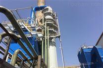 泰安砖厂BLS-118L湿式脱硫脱硝除尘器