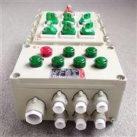 防爆配电箱动力照明箱仪表箱  上海
