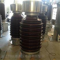 JDCF-110电磁式电压互感器
