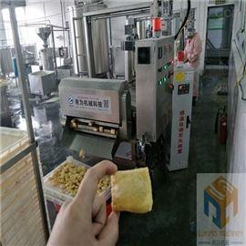 SPYZ-5000供应全自动豆腐串油炸炉