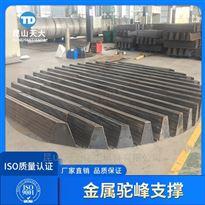 散堆填料支承碳钢Q235B驼峰支撑