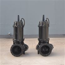 胶东半岛生产排污泵的厂家