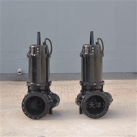 WQ系列提升泵生产厂家