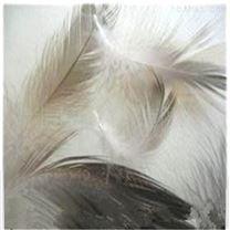 養鴨場羽毛粉處理設備  屠宰場處理