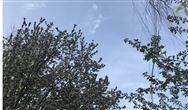 涂料、油墨及膠粘劑工業大氣污染物排放標準(GB 37824—2019)
