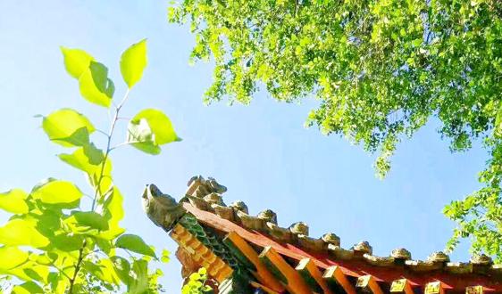 中國鐵塔/北汽鵬龍等18個項目入選京津冀動力電池回收利用試點名單