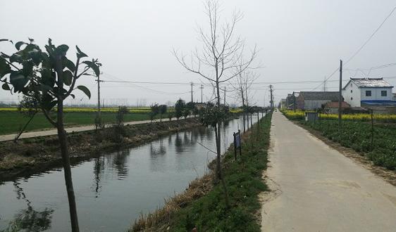 江苏滨海港镇着力构建生态绿色港镇