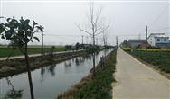 江蘇濱海港鎮著力構建生態綠色港鎮