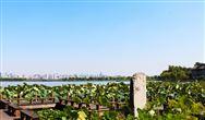 安徽六安:《霍邱县重污染天气应急预案(2019年修订)》