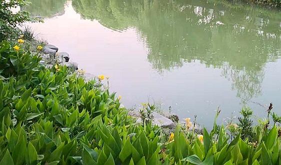 """""""雷区""""预警丨10月1日开始实施的环保规范"""