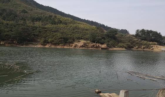 《内蒙古自治区水污染防治条例(草案)》公开听取意见