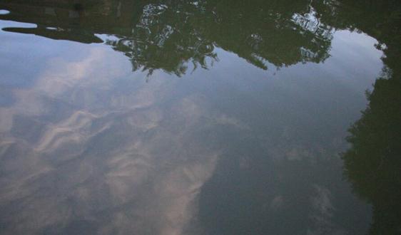 关于征求《生态环境损害鉴定评估技术指南 地表水与沉积物(征求意见稿)》意见的函