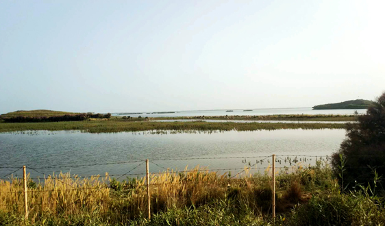 加速布局豫南市场 中原环保联合体囊获26亿治水项目