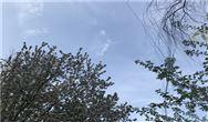部门解读|《山东省工业炉窑大气污染综合治理实施方案》