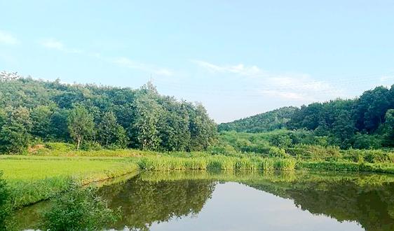 144亿水处理项目已落地 东莞还有2.4亿项目在招标