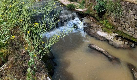 王洪臣:城镇污水处理要回归问题本质,精准提质增效