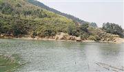 河南:2021年农村生活污水治理率达到33%以上