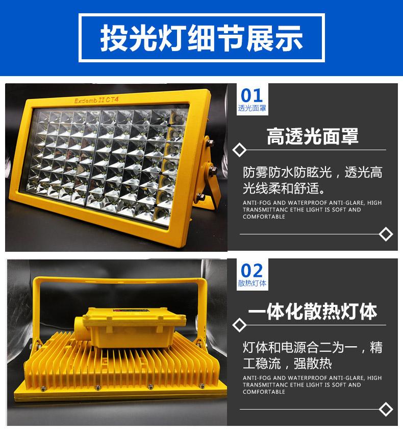 LED防爆泛光燈細節圖