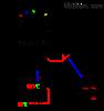 型号:BWR2-04JJ(TH)变压器绕组温控器库号:M103247